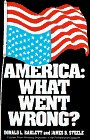 Image for AMERICA: WHAT WENT WRONG