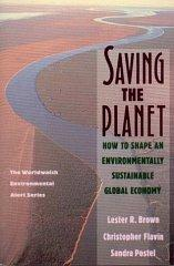 Image for SAVING THE PLANET: HOW TO SHAPE AN ENVIRONMENTALLY SUBSTAINABLE GLOBAL ECON OMY
