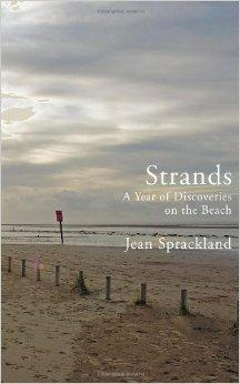 Image for STRANDS: A YEAR OF DISCOVERIES ON THE BEACH