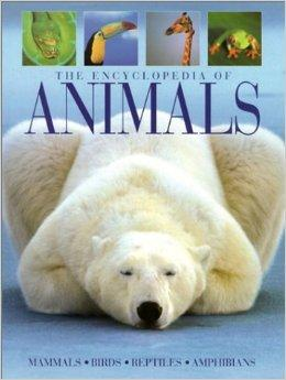 Image for THE ENCYCLOPEDIA OF ANIMALS: MAMMALS, BIRDS, REPTILES, AMPHIBIANS