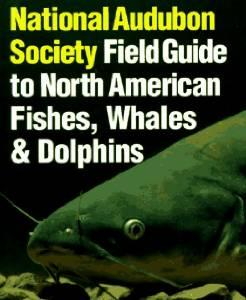 Image for NATIONAL AUDUBON SOCIETY FIELD GUIDE TO FISHES, WHALES AND DOLPHINS