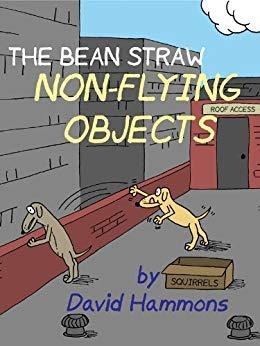 Image for THE BEAN STRAW: NON-FLYING OBJECTS