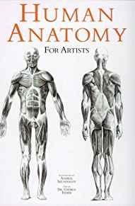 Image for HUMAN ANATOMY FOR ARTISTS