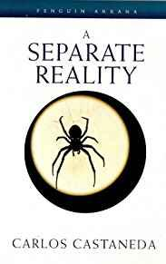 Image for A SEPARATE REALITY (ARKANA)